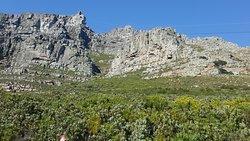 table mountain vista dal punto di partenza della teleferica