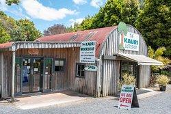 The Kauri Workshop