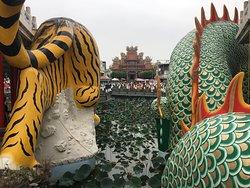 龍と虎のお尻より
