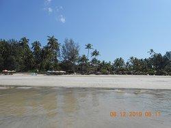 la spiaggia attrezzata di fronte all'hotel