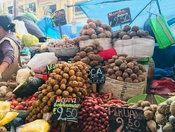 Arequipa city and San Camilo market tour