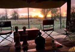 Sunset at Camp Zebra