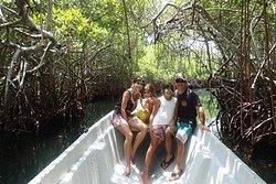 Baru Mangrove Forest