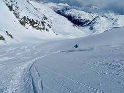 Been There, Skied That! Bluebird and Powder