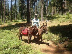 Jassmine and Jassper on the Arnold Rim Trail out for a stroll