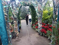 Going from the greenhouses toward the exit.