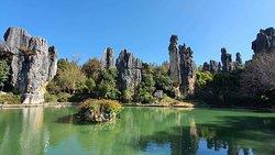 Stone Forest, Kunming