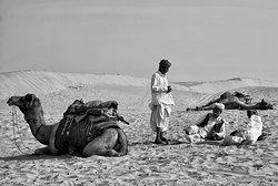 Deep Desert Safari