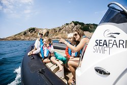 Private Charter on Seafari Swift