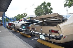 Classic Car Show op zaterdag