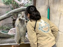 Nasu Animal Kingdom