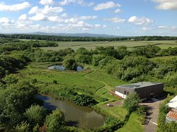 Balebarn Eco Lodge, with views to the wildlife pond