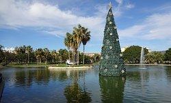 Lake and Christmas tree