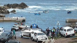 Kleinmond harbour - bringing back catch of the day.