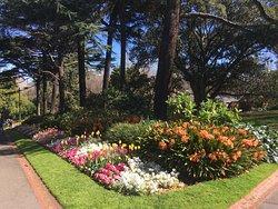 Melbourne botanic gardens in the spring