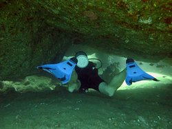 Great days of diving with the Divers Land team in Unawatuna!