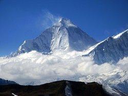 Dhaulagiri View