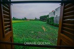 Omahe Qoema Syariah 3