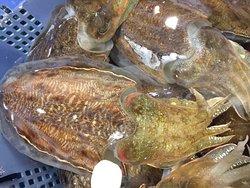 水槽には活きたままの鮮魚がいっぱい。