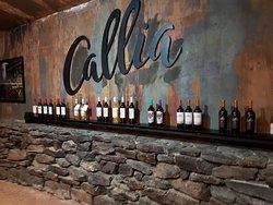 Colección de vinos CALLIA.