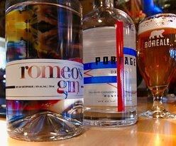 gin quebecois