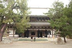 Sala del Buddha
