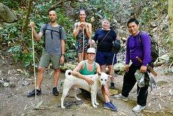 Bamboo Tours