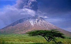 Serengeti national park Tanzania & Mount Kilimanjaro the highest mountain in Africa.