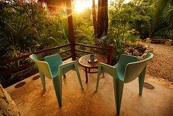 Toma un café con tus amigos o pareja mientras se dejan llevar por los sonidos de la selva.