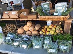 Baywood/Los Osos Farmers Market