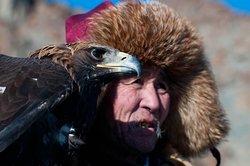 eagle hunter, Altai mountain range