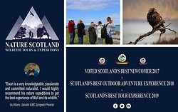 Nature Scotland - Mull Wildlife Expeditions
