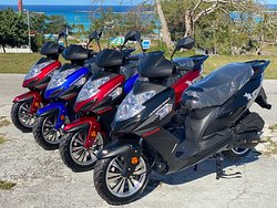 We're Back and Better than ever ! We would like to introduce our newest fleet of new 150 CC Scooters and CF Moto ATVs 😁  Book one of our new and exciting packages today. Get off ya heels and on some wheels today 🛵