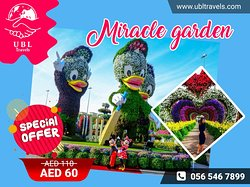 An extravagant outdoor recreation of a fantasy world with natural flowers!🌿🌸 Amazing right!  Limited period offer🔔‼ Grab your tickets @ AED 60 !  📞 0565467899 Book with us :- https://www.ubltravels.com/ticket/miracle-garden   #dubai #miraclegarden #flowers #uae #mydubai #travel #dubaimiraclegarden  #garden #dubailife  #oman #emirates #qatar #abu #السعودي #travelgram #instagood #miraclegardendubai #instatravel #nature #beautiful #visitdubai