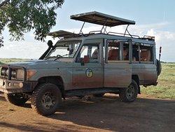 Agenzia safari vera Africa