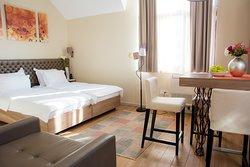Deluxe studio apartment with capacity up to three persons.  Visit us on www.apartmanisrbija.net