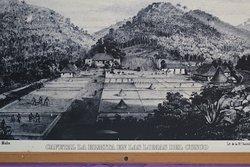 Cafetal ( Foto aus dem 19. Jahrh. von Franzosen mit Sklaven betrieben ) nahe Las Terrazas