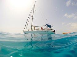 Sail Experience Fuerteventura
