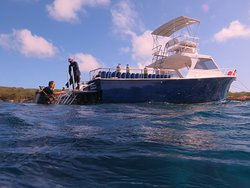 Caribbean Sea Sports Dive Shop
