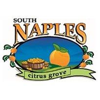 South Naples Citrus Grove