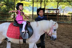 Horse Riding improves balance and posture