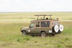 our safari jeep in serengeti
