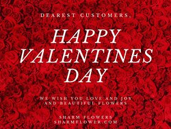 Flower Shop Sharm El Sheikh Egypt Sharm Flowers. Send Flowers 24 Hours. Online Flowers, Gifts & Cakes. Same day delivery on Valentine's Day available! sharmflower.com