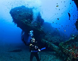 Japanese Ship Wreck Point