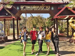 Tour: Private Half Day Tour To Thai Elephant Conservation Center at Lampang.  Thank you join trip with us. :)