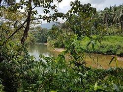 SInharaja Forest, lohnt sich länger zu bleiben gibt mehrere Strecken.
