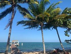 Belize Diving 2020