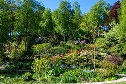 Himalayan Garden & Sculpture Park
