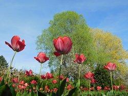 Jardin Relais Fleuri avallon
