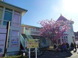 大きな通りから見た河津桜観光交流館